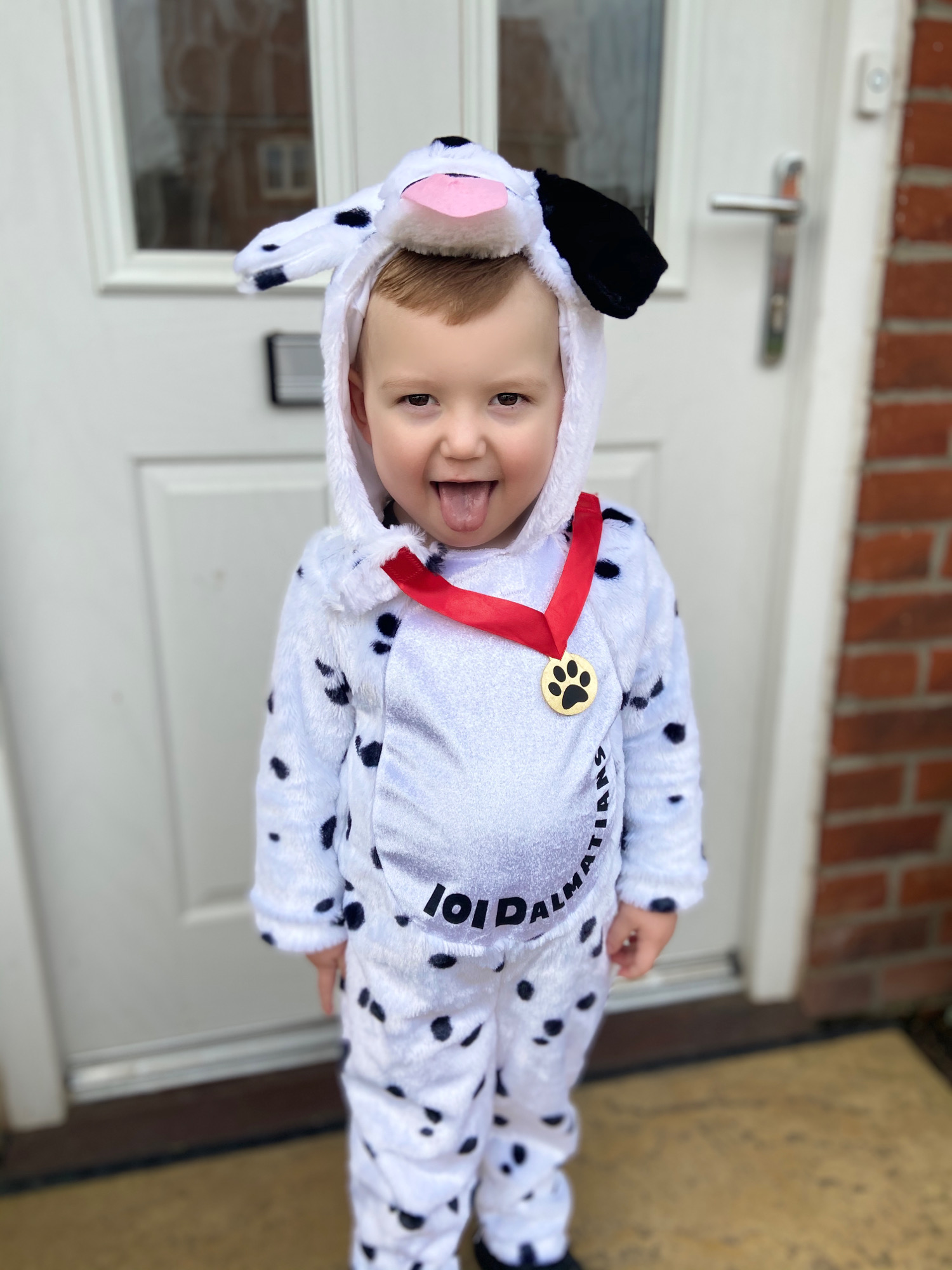 Droitwich Advertiser: Miller age 2 being a 101 Dalmatian for world book day 2020