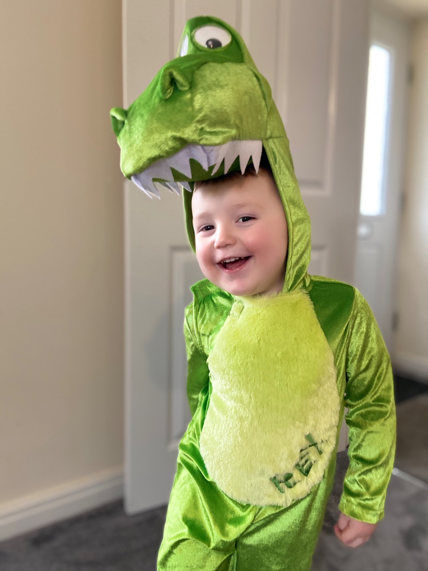 Droitwich Advertiser: Miller age 2 being rex from toy story for world book day 2020