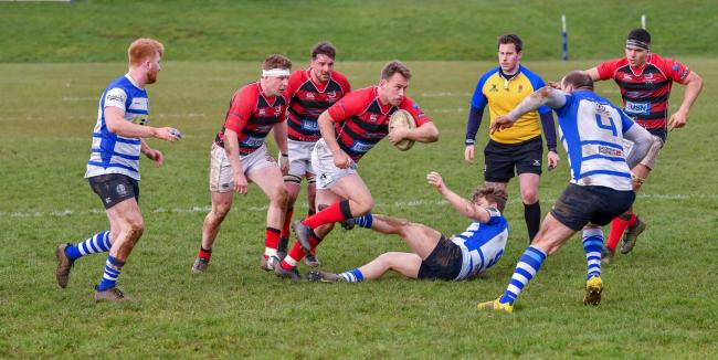 Bromsgrove's Tom Millen sits the Kettering scrum half down. Picture Andy Jepson