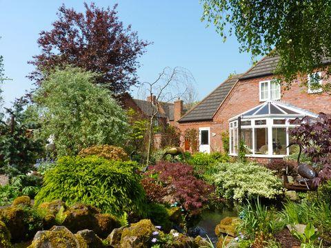 Discover the beauty of Hiraeth's garden in Droitwich
