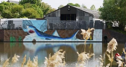 The mural at Netherwich basin that has now been removed.