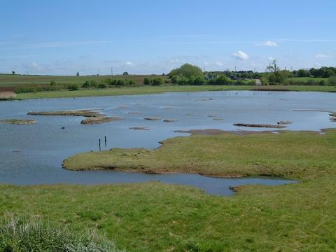 The nature reserve at Upton Warren.