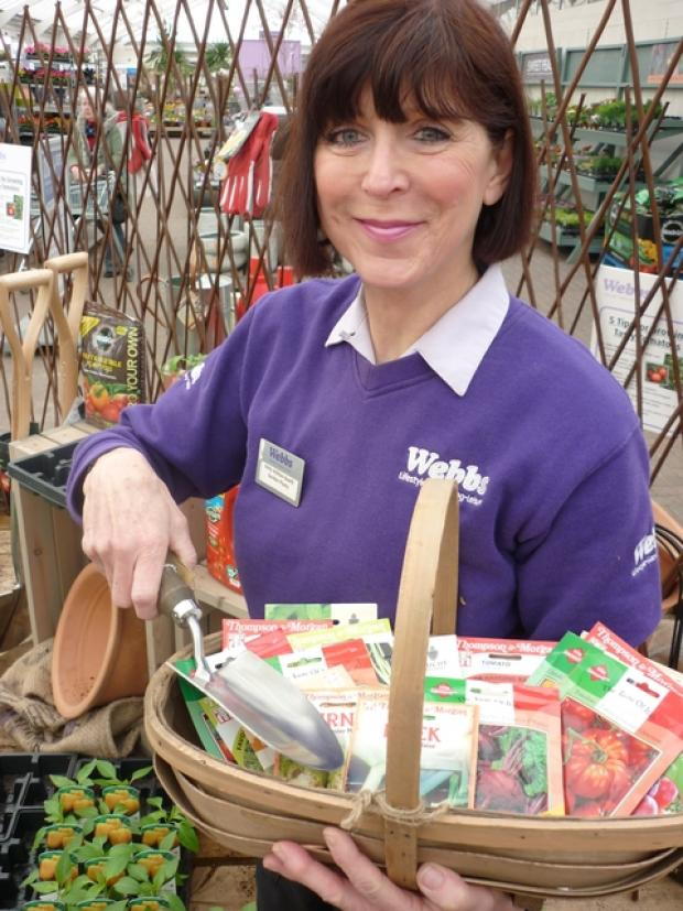 Anita Ashton-Booth gets ready for the Grow Your Own weekend at Webbs.