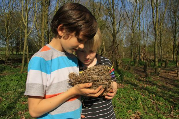 Children enjoy finding out more about nests