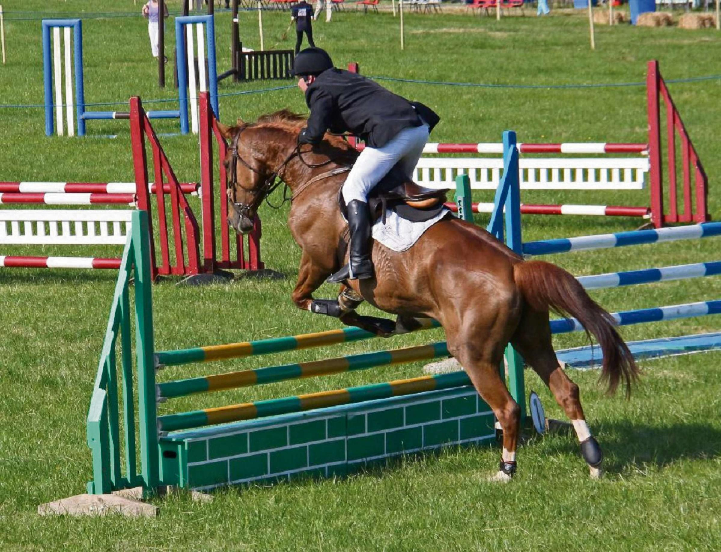 Showjumping at last year's Hanbury Countryside Show. SP