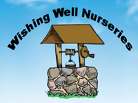 WISHING WELL NURSERIES LTD