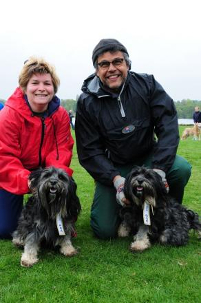 Tibetan terriers Nima and Sashi from Hadley Heath, near Droitwich, with their owners Louise Brooks and Mark Weaver (s)