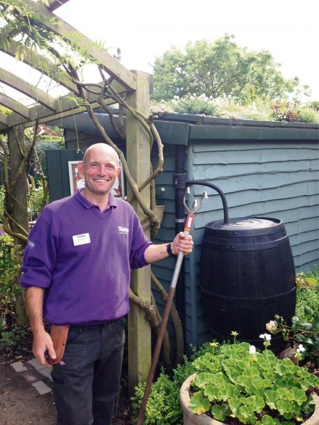 Droitwich Advertiser: Head gardener Mike Rutter shows off the living shed roof. SP
