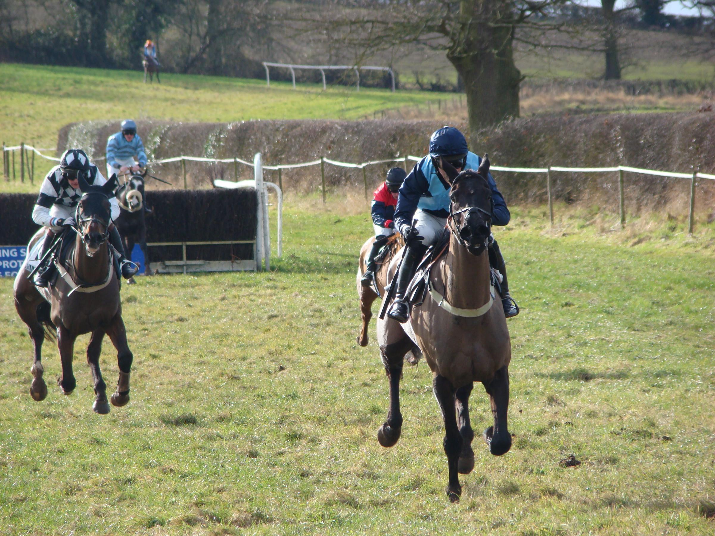 Optimised and Alex Edwards lead Mistercobar approaching the last at Chaddesley Corbett.