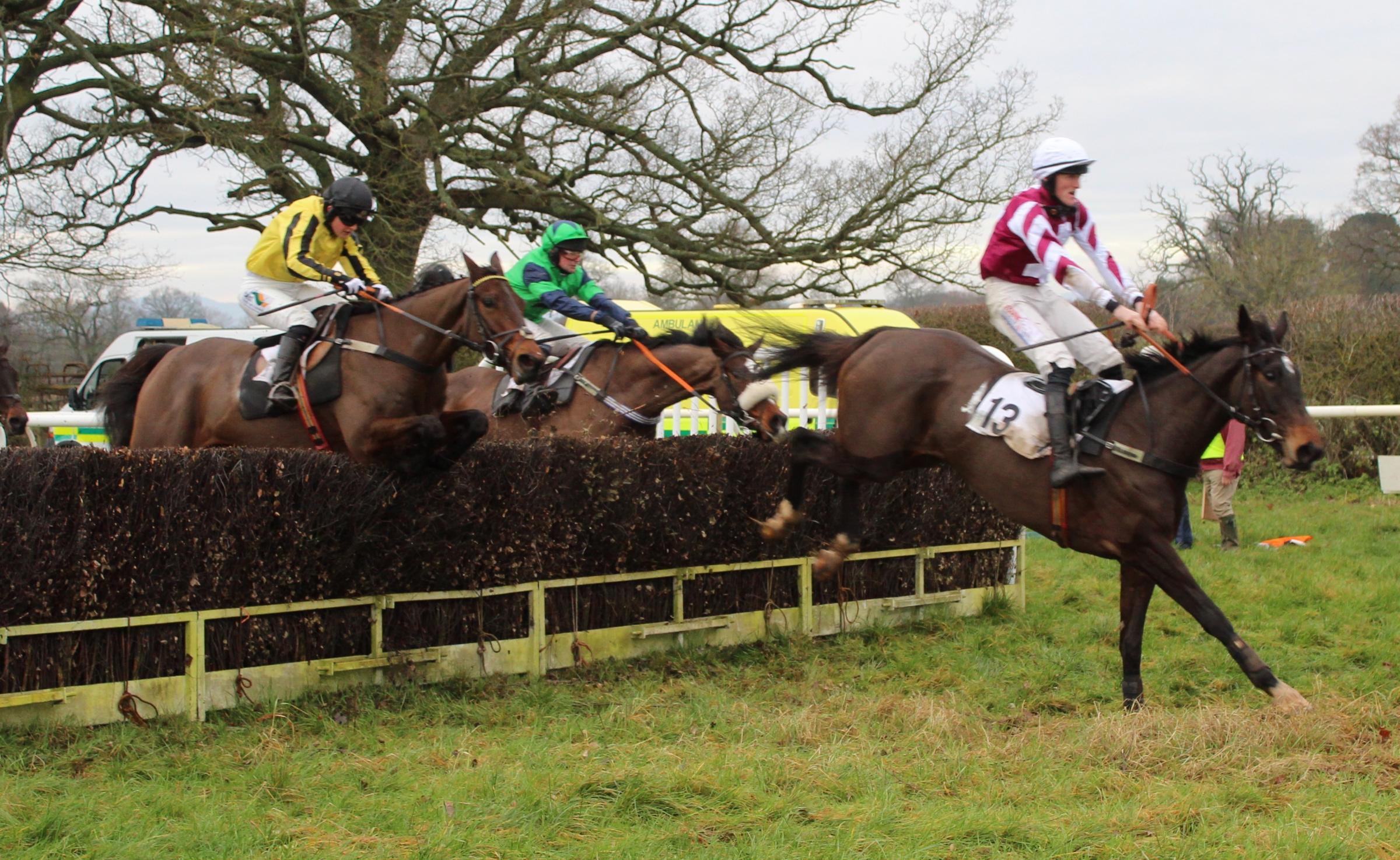 Hudson Yard and Martin McIntyre lead General Arrow (yellow) at the last. Photo: Graham Fisher